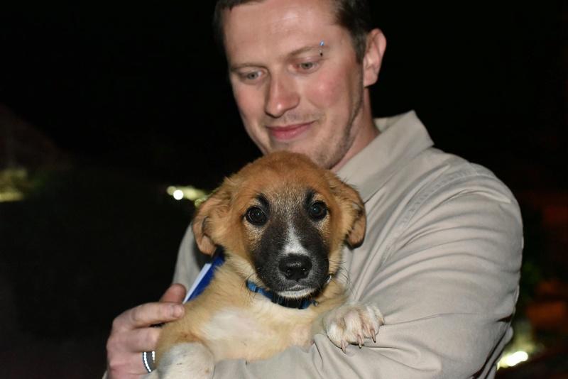 Athos - mâle - chez Andreea - Târgu Frumos - réservé adoption (68) 31913810