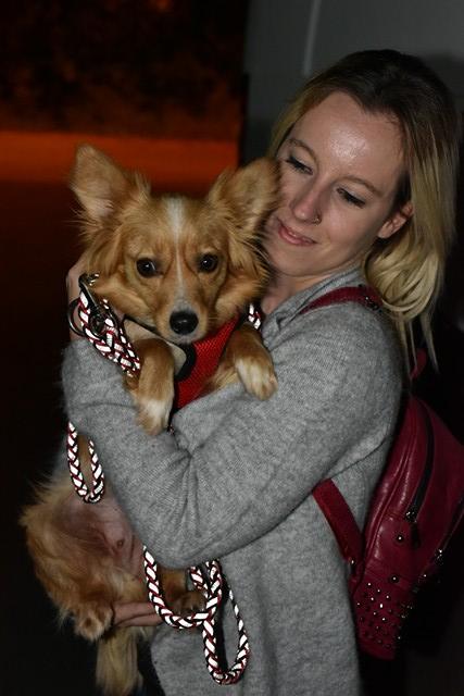 Valentina - femelle - chez Rudy (Iasi) - réservée adoption (68) 31932711