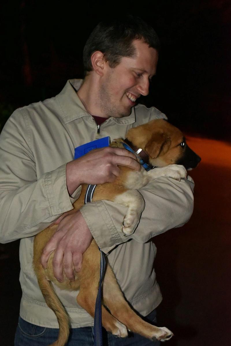 Athos - mâle - chez Andreea - Târgu Frumos - réservé adoption (68) 31957310