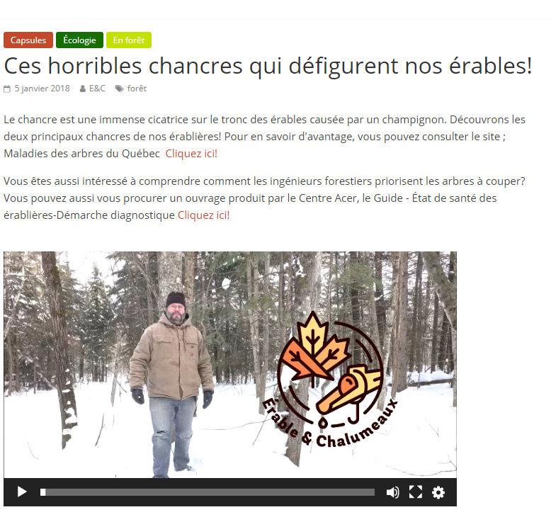 Érable & chalumeaux - Stephane Guay Chancr10