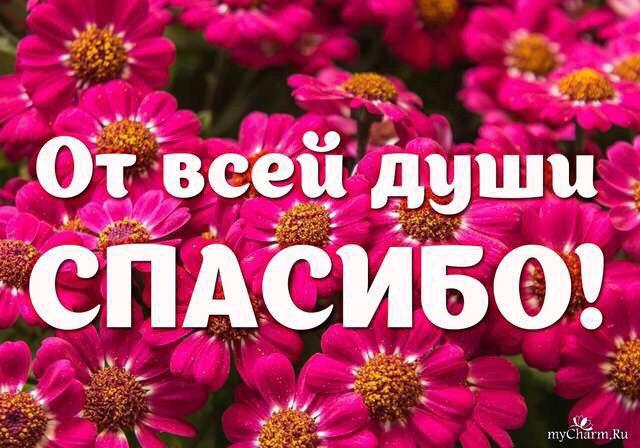 Плюшкин Игорек ДЦП Без помощи нам не справиться! - Страница 2 G04i5z11