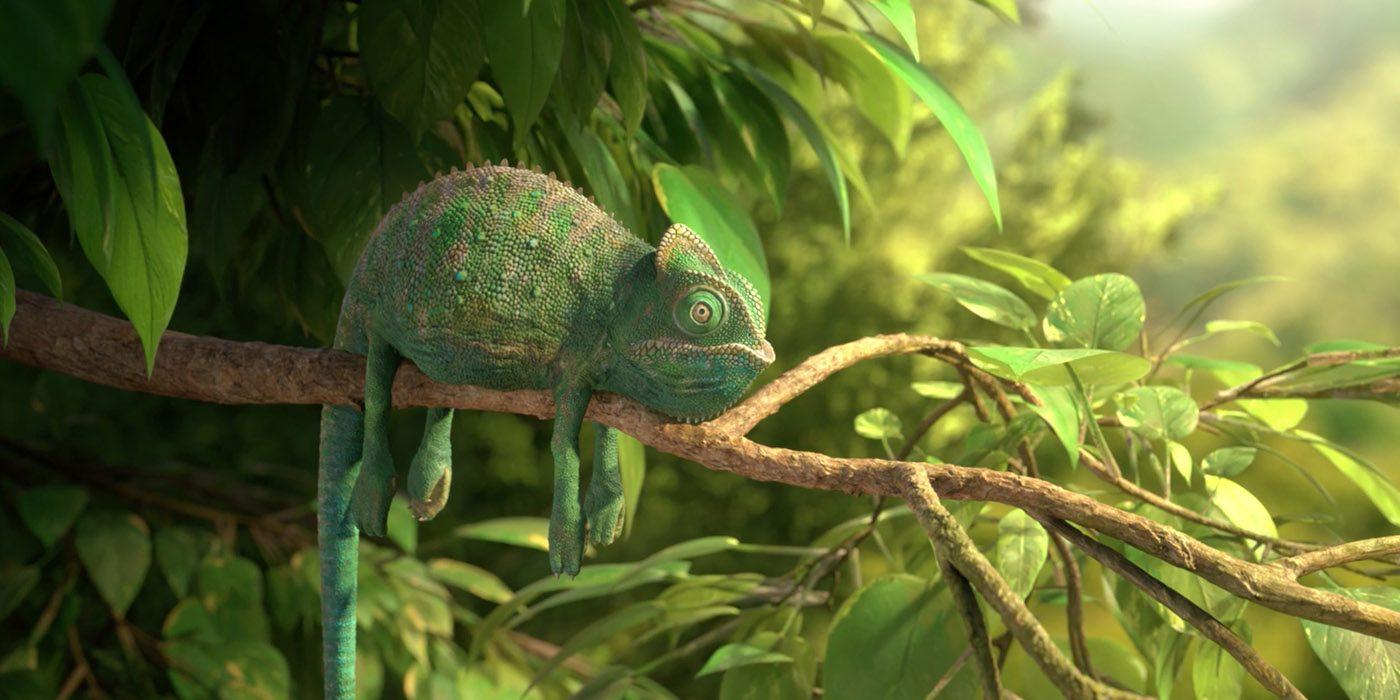 Sete curtas de animação pra assistir nessa semana (26) Nature10