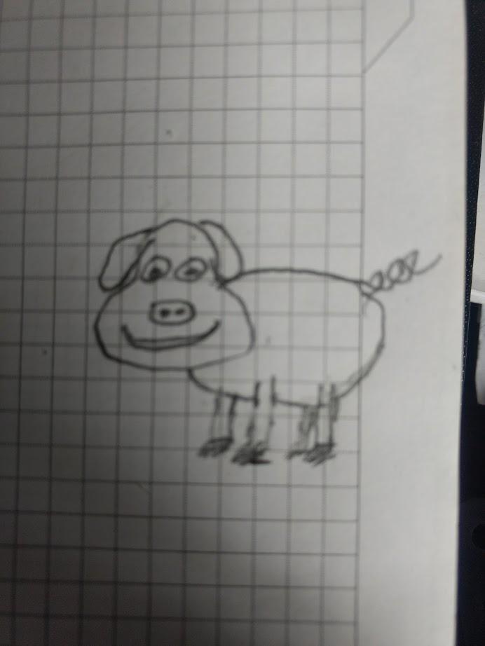 Test del cerdo  Pig10