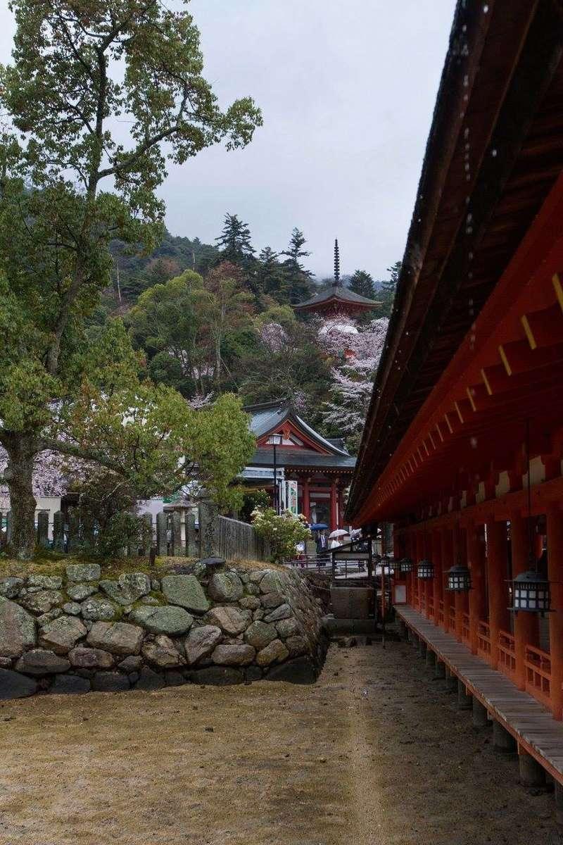 Du Lịch Nhật Image44