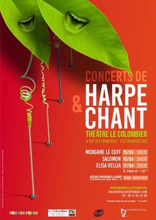 Stage de printemps des Harpes de Taranis dans le Tarn Affich11