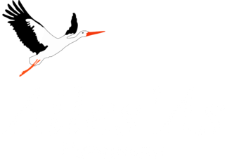 Ailes'As