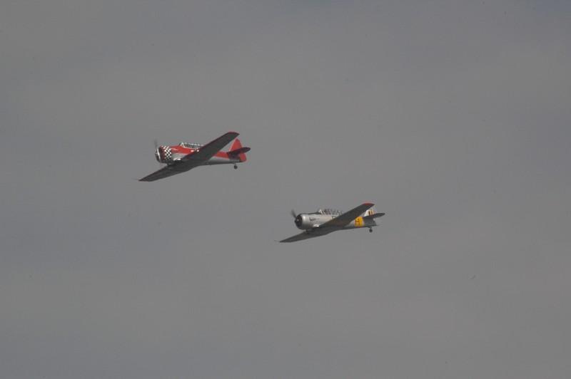 airshow en 2010 Base militaire de Beauvechain Dsc_0119