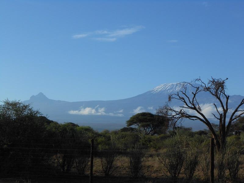 photos du kenya  - Page 4 Dscn1716