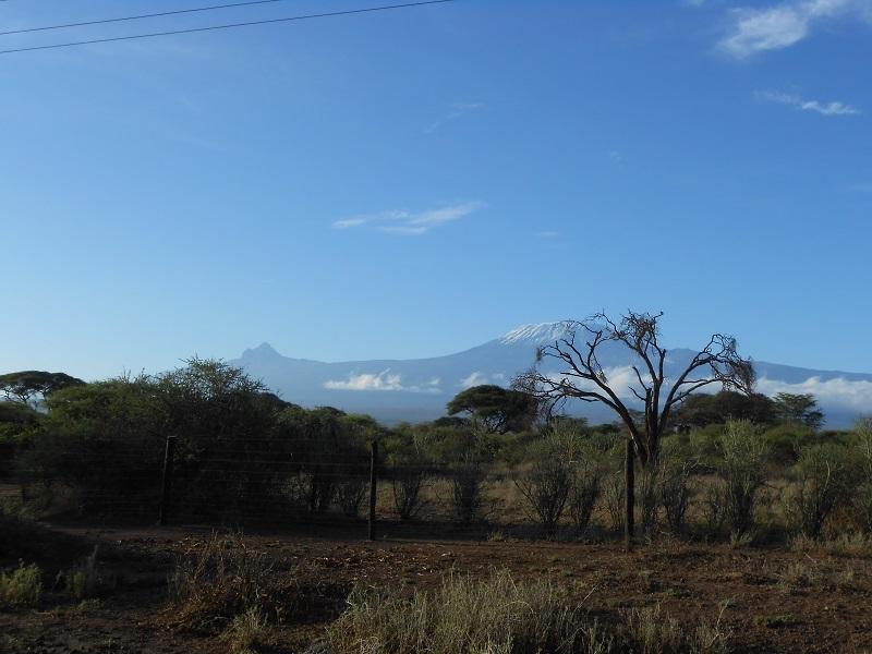 photos du kenya  - Page 4 Dscn1717