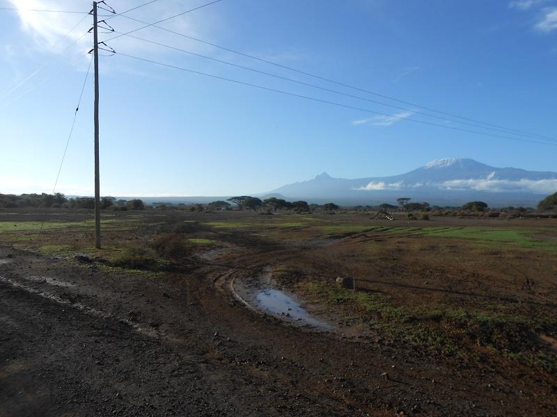 photos du kenya  - Page 4 Dscn1811