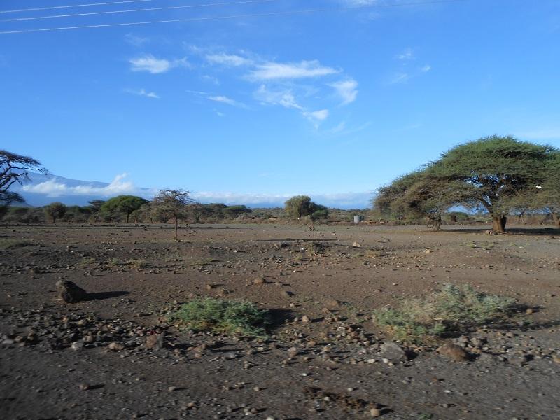 photos du kenya  - Page 4 Dscn1813