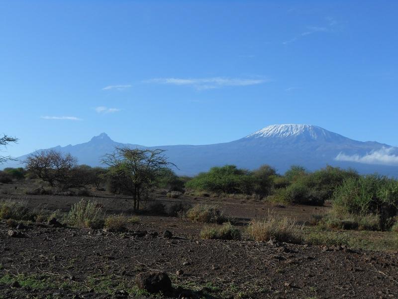 photos du kenya  - Page 4 Dscn1815