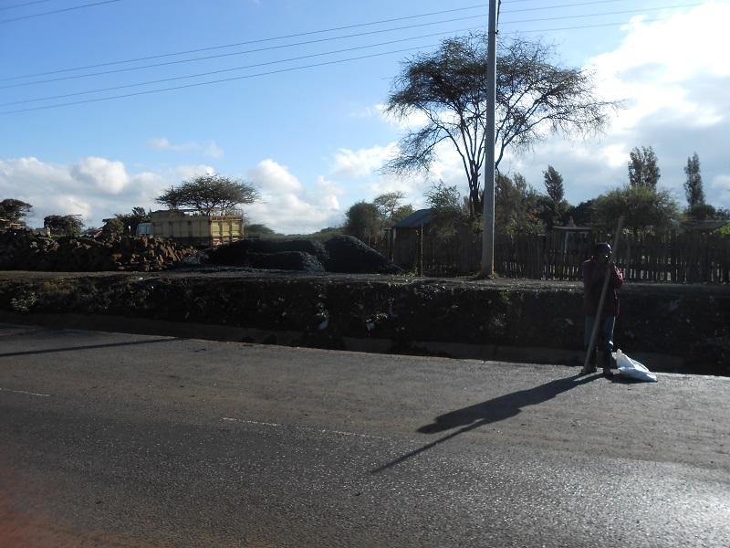 photos du kenya  - Page 4 Dscn1824