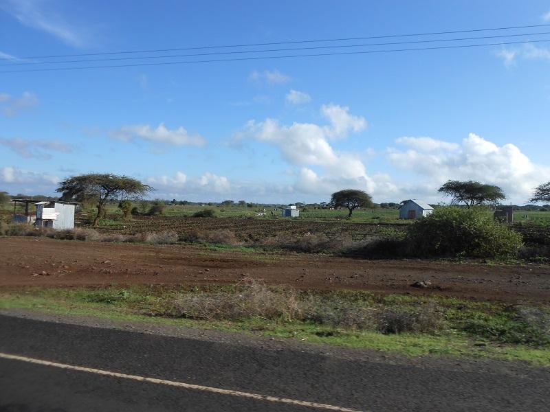 photos du kenya  - Page 4 Dscn1827