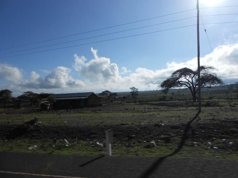 photos du kenya  - Page 4 Dscn1834