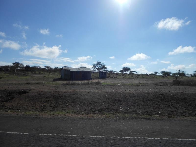 photos du kenya  - Page 4 Dscn1835