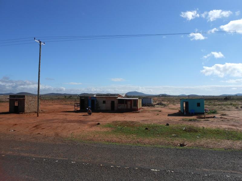 photos du kenya  - Page 4 Dscn1841