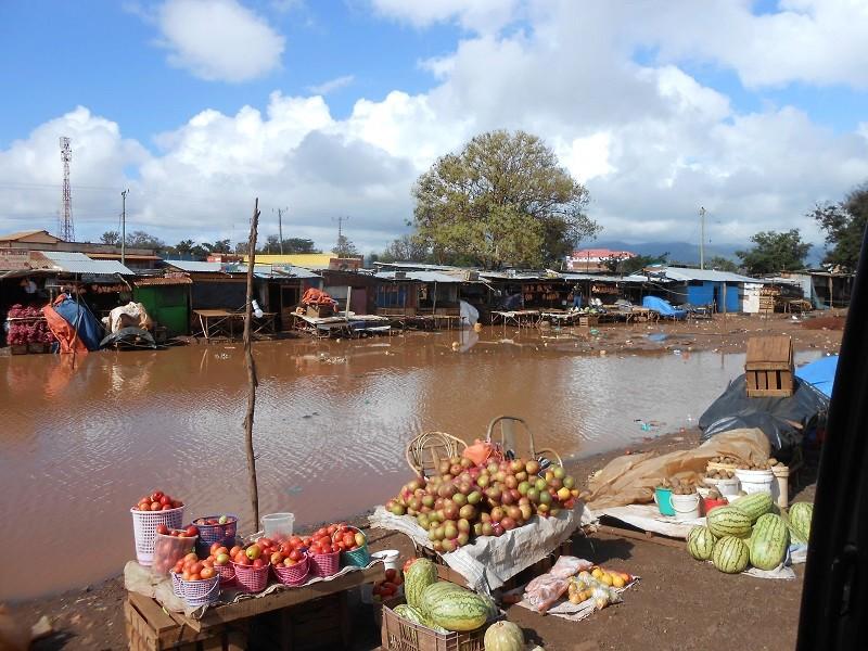 photos du kenya  - Page 4 Dscn1843