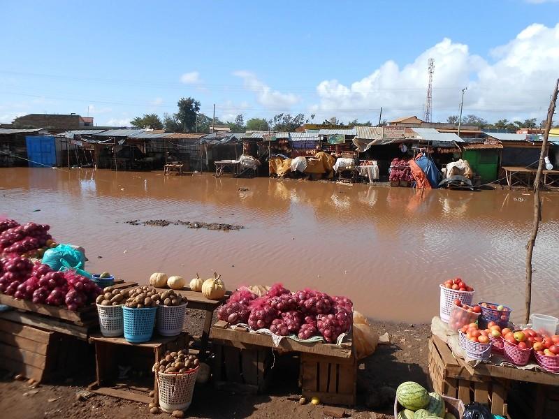 photos du kenya  - Page 4 Dscn1844