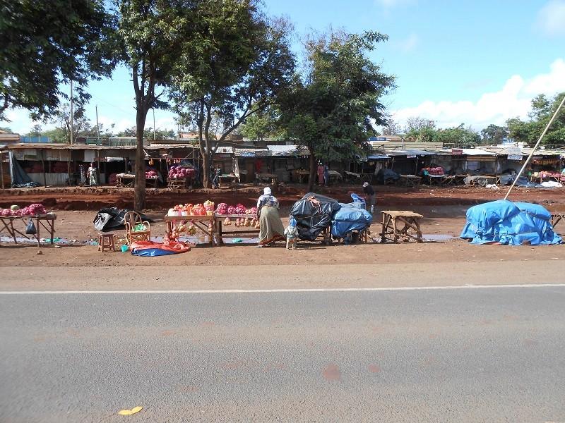 photos du kenya  - Page 4 Dscn1848