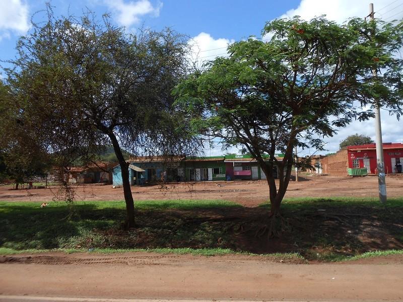 photos du kenya  - Page 4 Dscn1851
