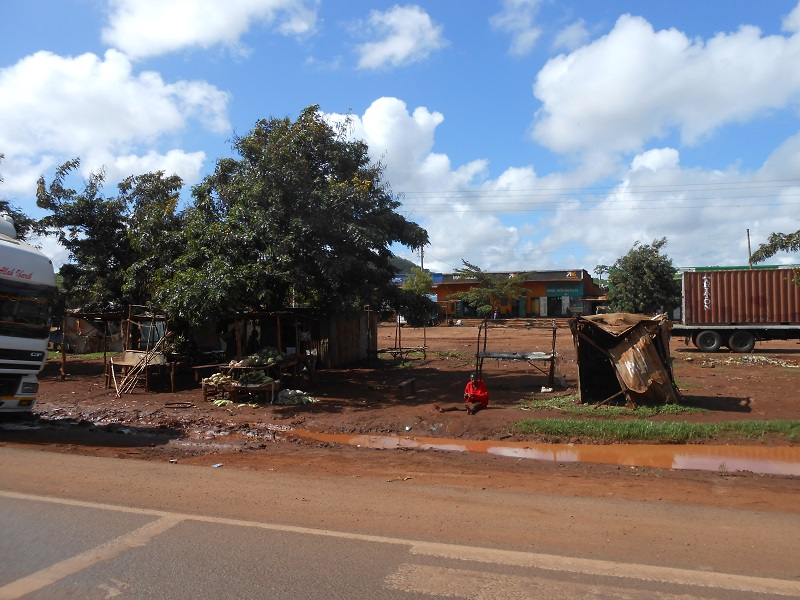 photos du kenya  - Page 4 Dscn1852