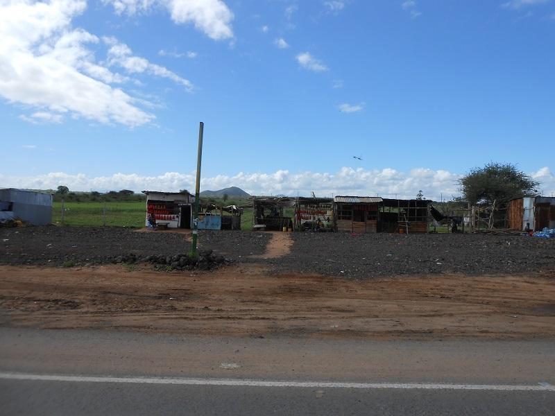 photos du kenya  - Page 4 Dscn1858