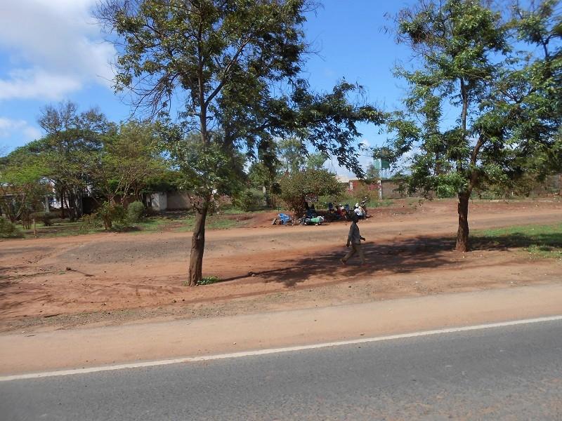 photos du kenya  - Page 4 Dscn1863