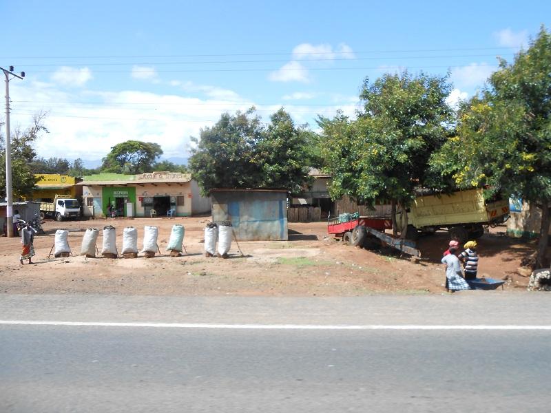 photos du kenya  - Page 4 Dscn1869