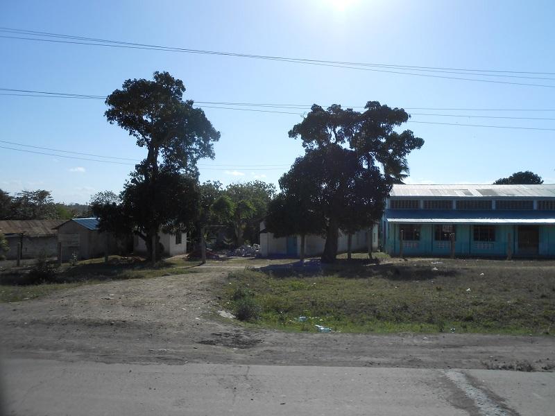photos du kenya  - Page 4 Dscn1876