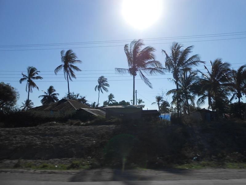 photos du kenya  - Page 4 Dscn1877
