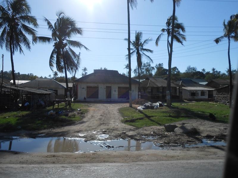 photos du kenya  - Page 4 Dscn1886