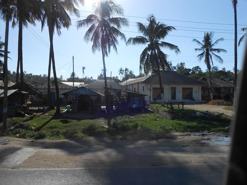 photos du kenya  - Page 4 Dscn1887