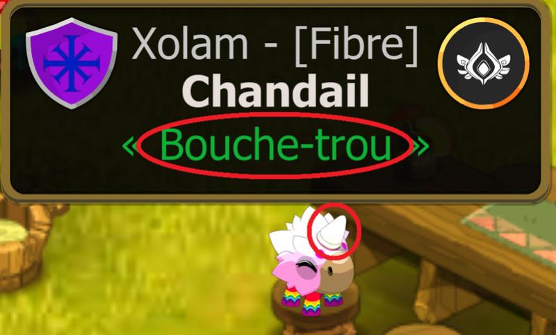 RIEN NE VOUS DERANGE? Bouhe_10