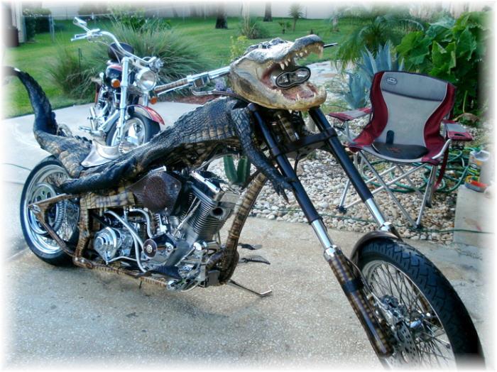 Humour en image du Forum Passion-Harley  ... - Page 6 P2382710