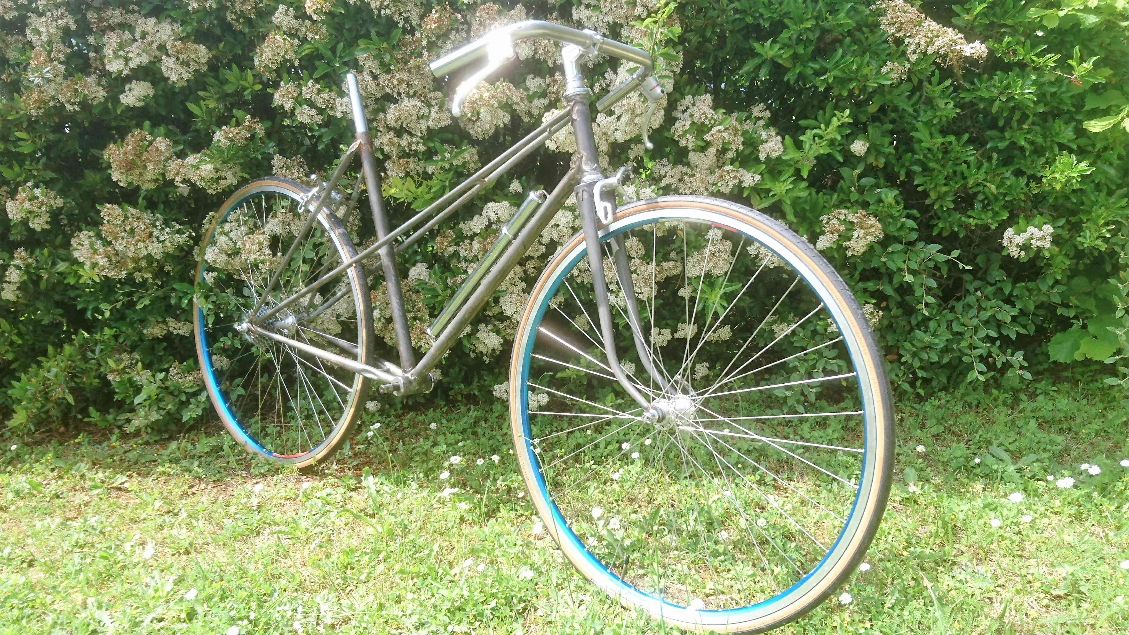 Vélo de ville femme / marque et année inconnue Dsc_9699