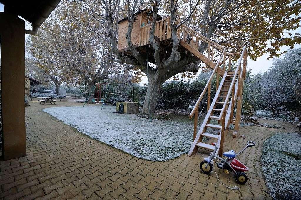 Une cabane dans l'arbre - Page 2 Dsc_4510