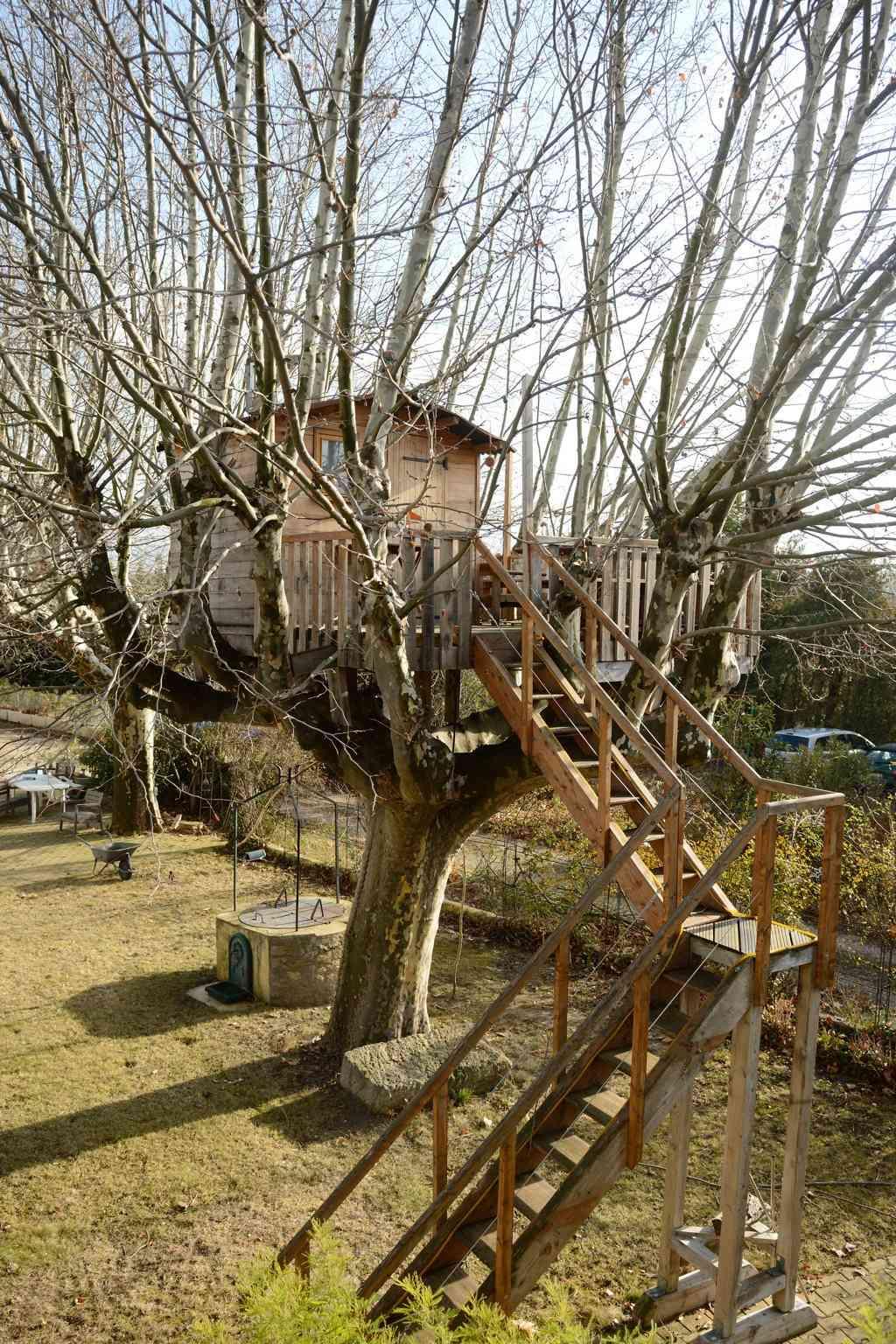 Une cabane dans l'arbre - Page 2 Dsc_7529