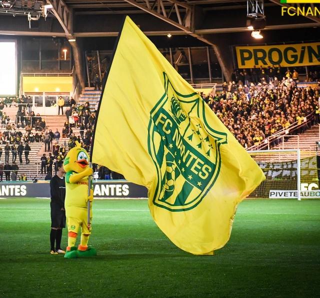 L1 J16  Dimanche 03 décembre 2017 - 15:00 AS Saint-Etienne / FC Nantes Riri_l10