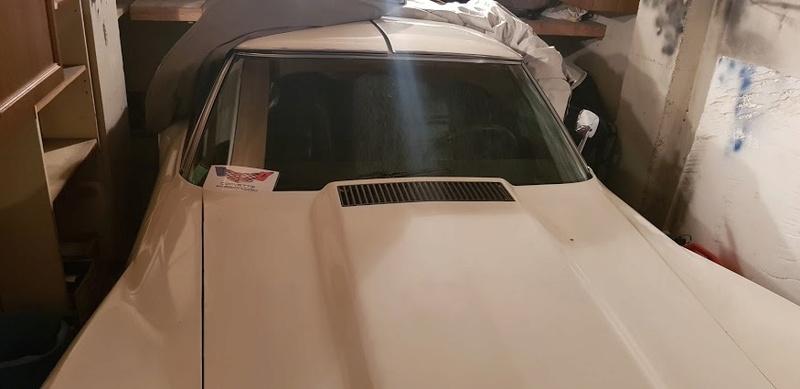 sortie de grange corvette  c3 1976 - Page 10 20180251
