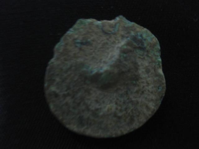 Semis de Cástulo Img_4721