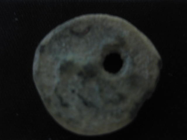 Semis de Cástulo Img_4722