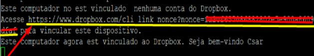 Cópia de segurança para a Dropbox 111