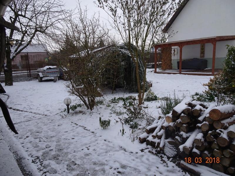 neige et encore neige Dsc02714