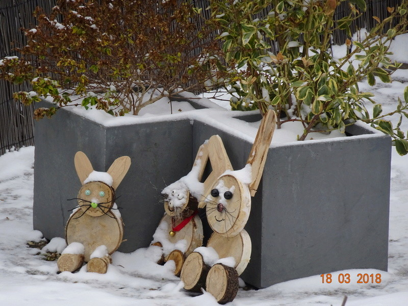 neige et encore neige Dsc02717