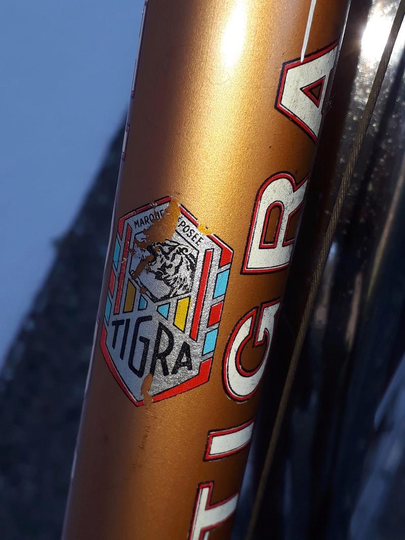 Vélo Tigra full Reynolds à dater 20180424