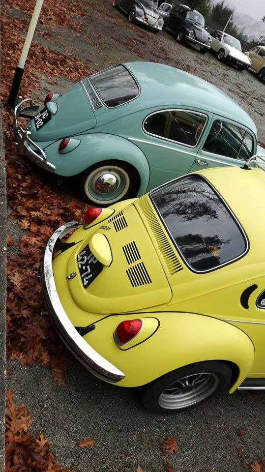 13º Convívio de Natal de Amigos dos VW Clássicos - 09 Dez. 2017 - Oliveira de Azeméis 25188310