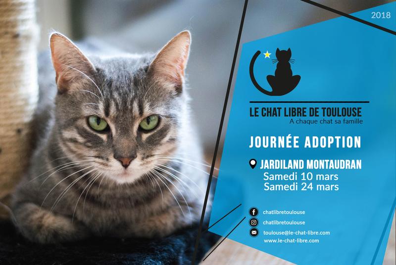 [ Adoptions ] Samedi 24 mars 2018 : Jardiland Montaudran Journy10