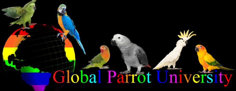 Global Parrot University