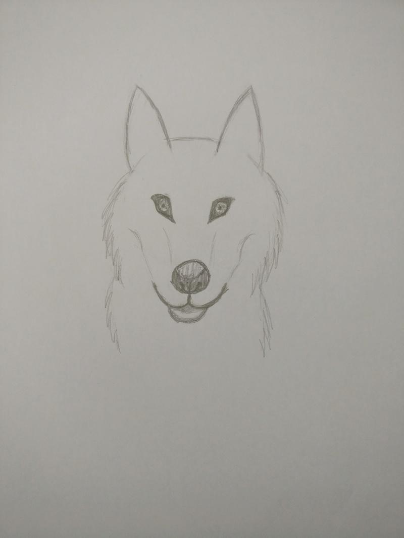 Meine Bemühungen zum Malen/Zeichnen :D Big-wo10